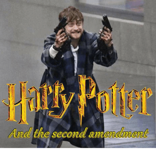 Hatt Potter And The Second Amendment Potter Meme On Sizzle