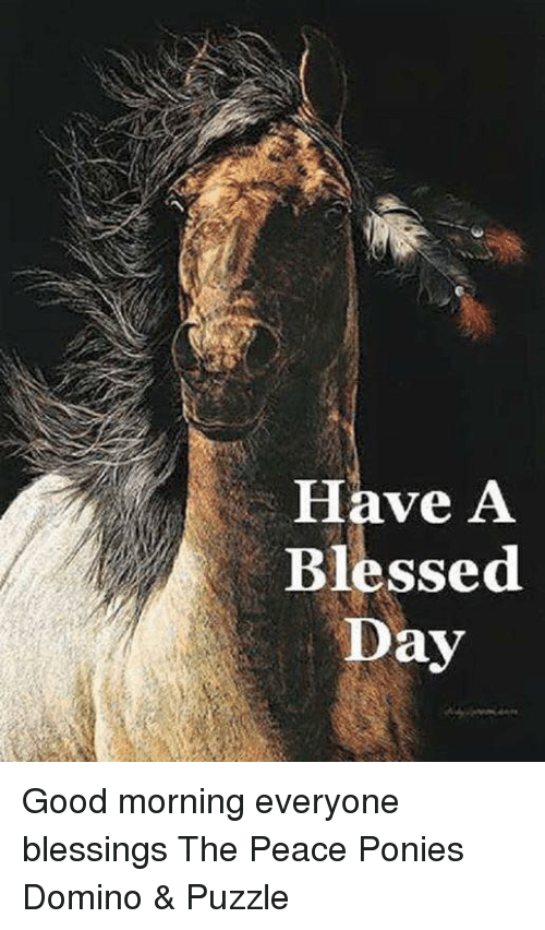 Have A Blessed Day Good Morning Everyone Blessings The Peace Ponies