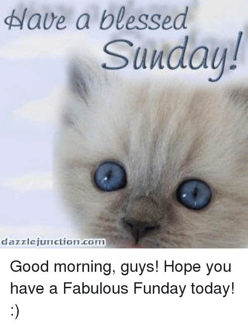 Have A Blessed Sunday Dazzlejun Ction Com Good Morning Guys Hope