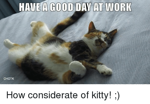 Have A Good Day At Work Chotk How Considerate Of Kitty Kitties