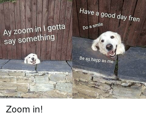 Zoom, Good, and Smile: Have a good day fren  Ay zoom in I gotta  say something  Do a smile  Be as happ as me <p>Zoom in!</p>