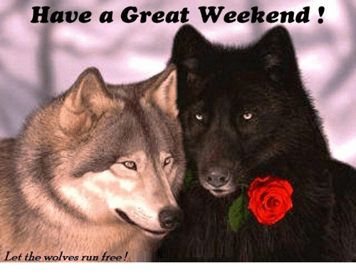 Image result for Wolf Weekend