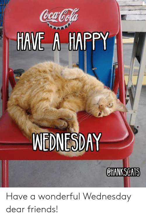 Friends, Memes, and Happy: HAVE A HAPPY  MENESDAY  CHANKSCATS Have a wonderful Wednesday dear friends!