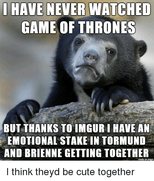Cute, Game of Thrones, and Game: HAVE NEVER WATCHED  GAME OF THRONES  BUT THANKS TO IMGUR LHAVE AN  EMOTIONAL STAKE IN TORMUND  AND BRIENNE GETTING TOGETHER  made on imgur I think theyd be cute together