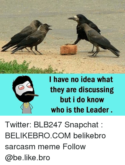 Be Like, Meme, and Memes: have no idea what  they are discussing  but i do know  who is the Leader. Twitter: BLB247 Snapchat : BELIKEBRO.COM belikebro sarcasm meme Follow @be.like.bro