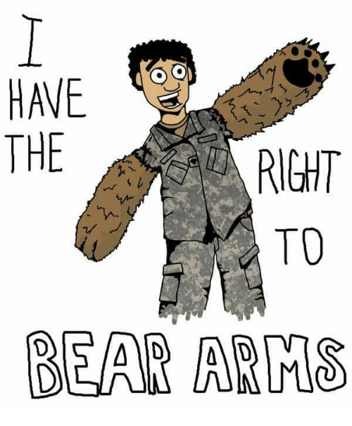 Image result for the right to bear arms