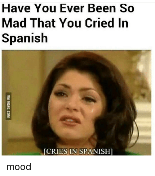 Memes, Mood, and Spanish: Have You Ever Been So  Mad That You Cried In  Spanish  IES IN SPANISHI mood