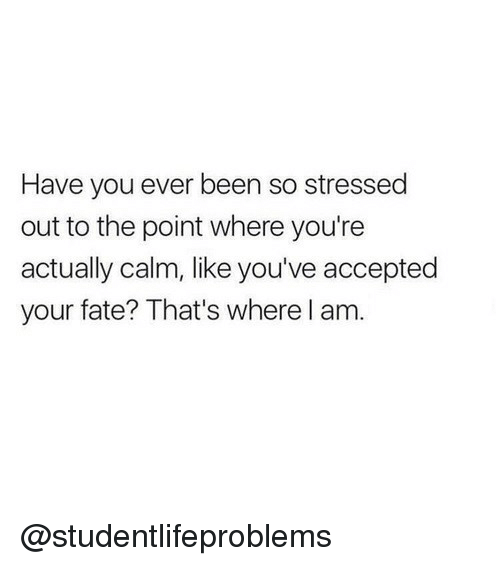 Tumblr, Http, and Fate: Have you ever been so stressed  out to the point where you're  actually calm, like you've accepted  your fate? That's where l am. @studentlifeproblems