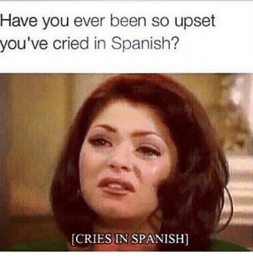 Memes, Spanish, and Been: Have you ever been so upset  you've cried in Spanish?  [CRIES IN SPANISH
