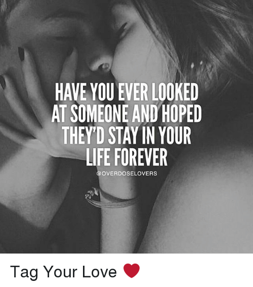 Memes, 🤖, and Your Love: HAVE YOU EVER LOOKED  AT SOMEONE AND HOPED  THEY'D STAYIN YOUR  LIFE FOREVER  OVERDOSELOVERS Tag Your Love ❤
