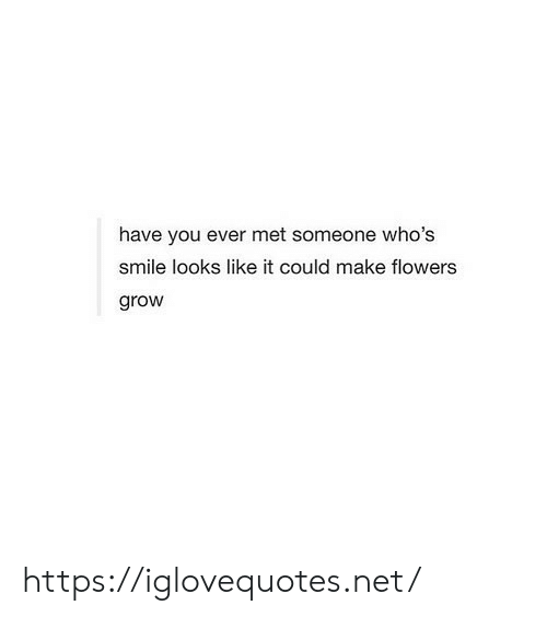Flowers, Smile, and Net: have you ever met someone who's  smile looks like it could make flowers  grow https://iglovequotes.net/