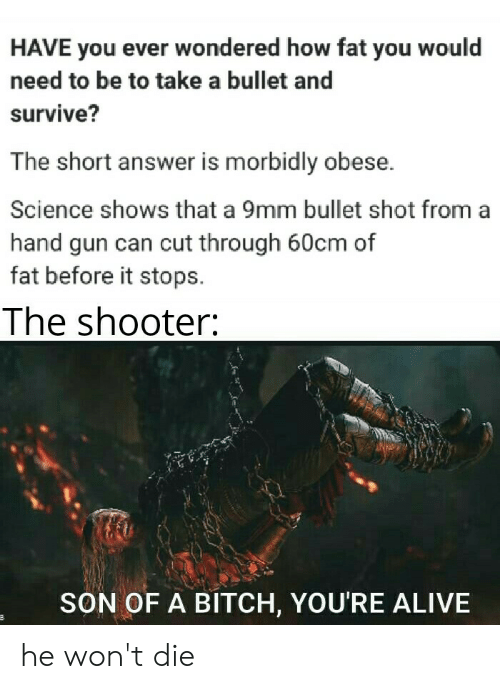 Alive, Bitch, and Science: HAVE you ever wondered how fat you would  need to be to take a bullet and  survive?  The short answer is morbidly obese.  Science shows that a 9mm bullet shot from a  hand gun can cut through 60cm of  fat before it stops  The shooter:  SON OF A BITCH, YOU'RE ALIVE he won't die