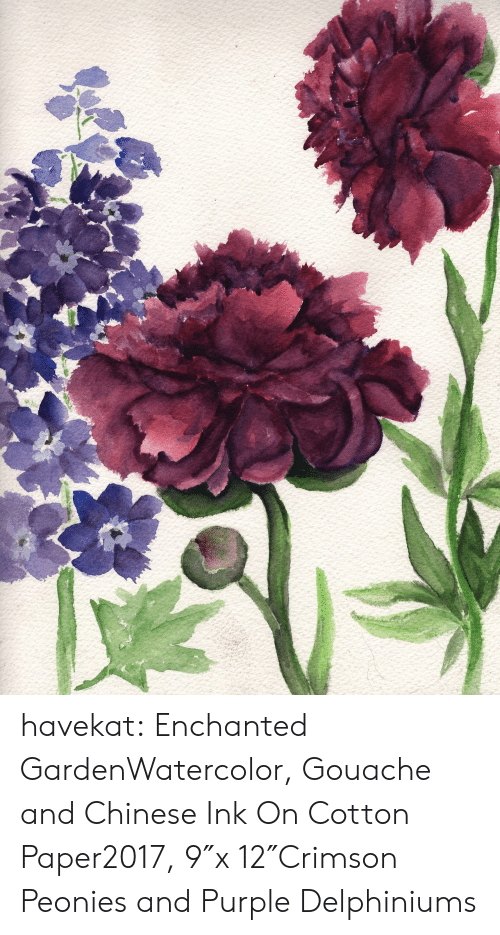 Target, Tumblr, and Blog: havekat:  Enchanted GardenWatercolor, Gouache and Chinese Ink On Cotton Paper2017, 9″x 12″Crimson Peonies and Purple Delphiniums