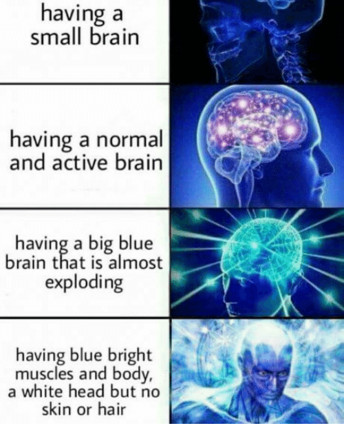 Head, Blue, and Brain: having a  small brain  having a normal  and active brain  having a big blue  brain that is almost  exploding  having blue bright  muscles and body,  a white head but no  skin or hair