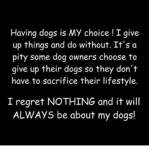 Dogs, Memes, and Regret: Having dogs is MY choice !I give  up things and do without. It's a  pity some dog owners choose to  give up their dogs so they don't  have to sacrifice their lifestyle.  I regret NOTHING and it will  ALWAYS be about my dogs!