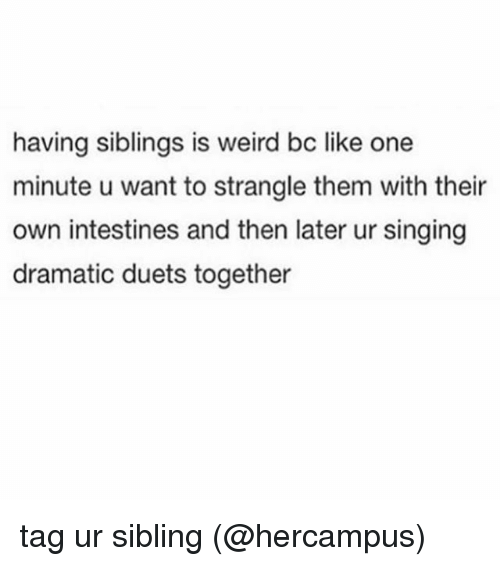 Memes, Singing, and Weird: having siblings is weird bc like one  minute u want to strangle them with their  own intestines and then later ur singing  dramatic duets together tag ur sibling (@hercampus)