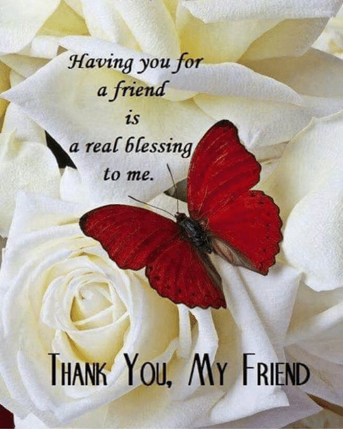 Having You For A Friend A Real Blessing To Me Ihank You My Friend