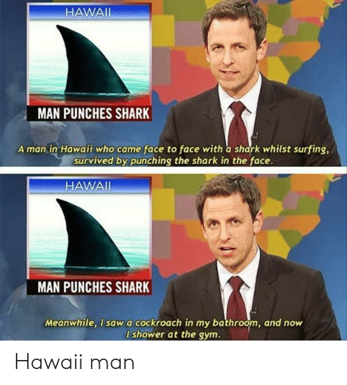 Gym, Shower, and Shark: HAWAII  MAN PUNCHES SHARK  A man in Hawaii who came face to face with a shark whilst surfing,  survived by punching the shark in the face.  HAWAI  MAN  PUNCHES SHARK  Meanwhile, I sawa cockroach in my bathroom, and now  I shower at the gym. Hawaii man