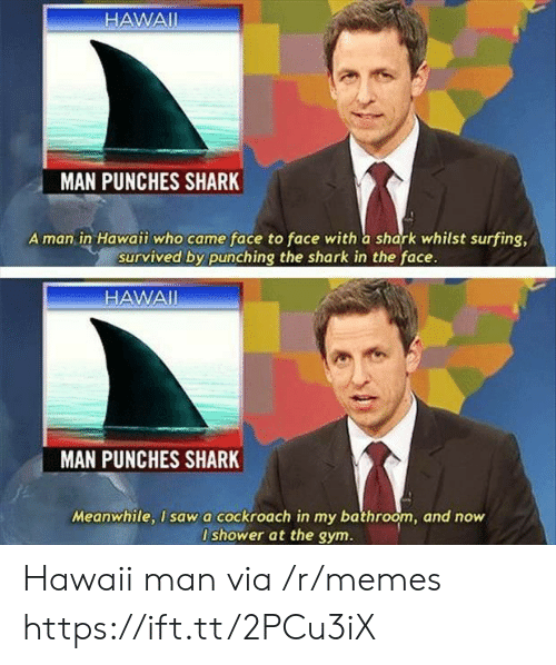 Gym, Memes, and Shower: HAWAII  MAN PUNCHES SHARK  A man in Hawaii who came face to face with a shark whilst surfing,  survived by punching the shark in the face.  HAWAI  MAN  PUNCHES SHARK  Meanwhile, I sawa cockroach in my bathroom, and now  I shower at the gym. Hawaii man via /r/memes https://ift.tt/2PCu3iX