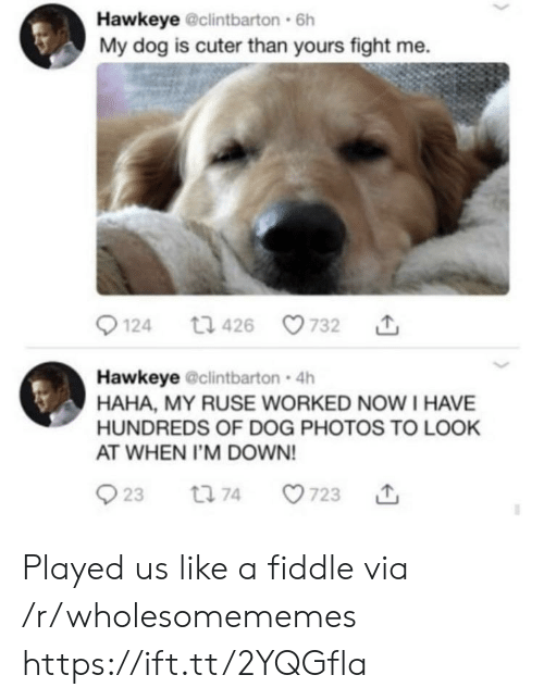 Fight, Haha, and Dog: Hawkeye @clintbarton 6h  My dog is cuter than yours fight me.  t1 426  124  732  Hawkeye @clintbarton 4h  HAHA, MY RUSE WORKED NOWI HAVE  HUNDREDS OF DOG PHOTOS TO LOOK  AT WHEN I'M DOWN!  23  723  t 74 Played us like a fiddle via /r/wholesomememes https://ift.tt/2YQGfla