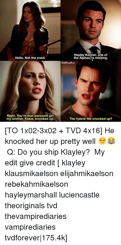 Hello, Memes, and Girl: Hayley Kenner, one of  the Alphas, is missing.  Hello. Not the maid  Right. You're that werewolf girl  my brother, Klaus, knocked up.  The hybrid Nik knocked up? [TO 1x02-3x02 + TVD 4x16] He knocked her up pretty well 😏😂 ⠀ Q: Do you ship Klayley? ⠀ My edit give credit [ klayley klausmikaelson elijahmikaelson rebekahmikaelson hayleymarshall luciencastle theoriginals tvd thevampirediaries vampirediaries tvdforever|175.4k]