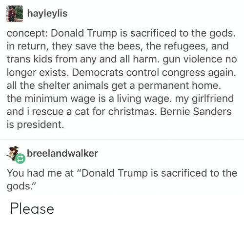 """Animals, Bernie Sanders, and Christmas: hayleylis  concept: Donald Trump is sacrificed to the gods.  in return, they save the bees, the refugees, and  trans kids from any and all harm. gun violence no  longer exists. Democrats control congress again.  all the shelter animals get a permanent home.  the minimum wage is a living wage. my girlfriend  and i rescue a cat for christmas. Bernie Sanders  is president.  breelandwalker  You had me at """"Donald Trump is sacrificed to the  gods."""" Please"""