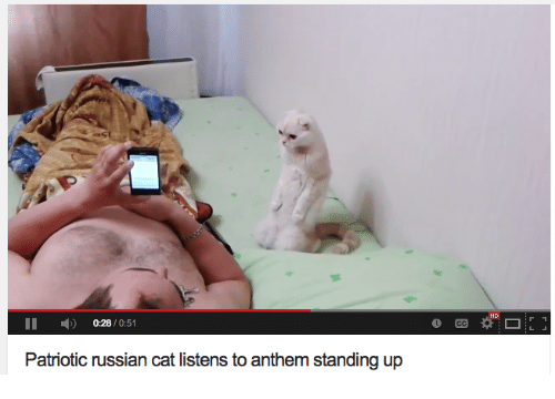 Russian, Cat, and Patriotic: HD  II 0:28/0:51  Patriotic russian cat listens to anthem standing up