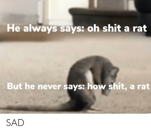 Sad, Never, and How: He always says: oh shit a rat  But he never says: how shit, a rat SAD