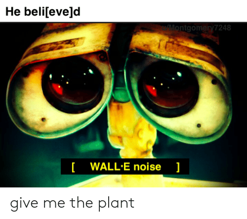 He Believed Ntgomery7248 Wall E Noise Give Me The Plant Dank