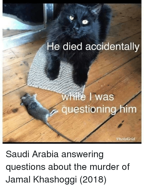 Saudi Arabia, Murder, and Questions: He died accidentally  W #6 I was  questioning him Saudi Arabia answering questions about the murder of Jamal Khashoggi (2018)