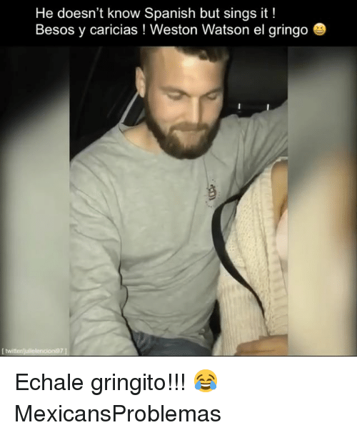 Memes, Spanish, and 🤖: He doesn't know Spanish but sings it!  Besos y caricias ! Weston Watson el gringo Echale gringito!!! 😂 MexicansProblemas