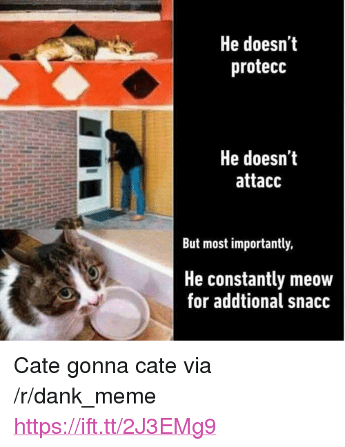 """Dank, Meme, and Via: He doesn't  protecc  He doesn'it  attacc  But most importantly,  He constantly meow  for addtional snacc <p>Cate gonna cate via /r/dank_meme <a href=""""https://ift.tt/2J3EMg9"""">https://ift.tt/2J3EMg9</a></p>"""
