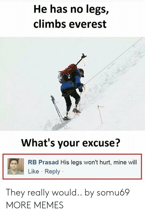 Dank, Memes, and Target: He has no legs,  climbs everest  What's your excuse?  RB Prasad His legs won't hurt, mine wil  Like Reply They really would.. by somu69 MORE MEMES