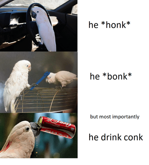 he-honk-he-bonk-but-most-importantly-he-drink-conk-28861788.png