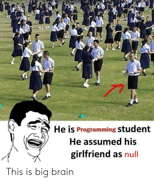 He Is Programming Student He Assumed His Girlfriend as Null
