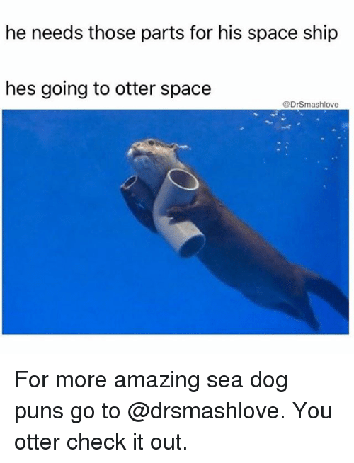 Memes, Puns, and Space: he needs those parts for his space ship  hes going to otter space  @DrSmashlove For more amazing sea dog puns go to @drsmashlove. You otter check it out.
