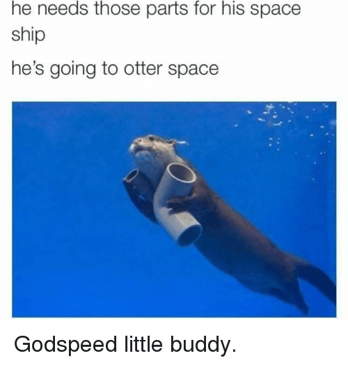 Memes, Space, and 🤖: he needs those parts for his space  ship  he's going to otter space Godspeed little buddy.