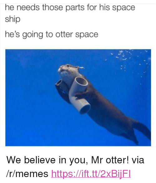 """Memes, Space, and Otter: he needs those parts for his space  ship  he's going to otter space <p>We believe in you, Mr otter! via /r/memes <a href=""""https://ift.tt/2xBijFI"""">https://ift.tt/2xBijFI</a></p>"""