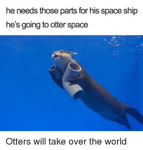 Dank, Otters, and Space: he needs those parts for his space ship  he's going to otter space Otters will take over the world
