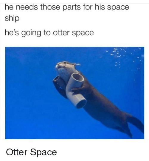 He Needs Those Parts for His Space Ship He's Going to Otter