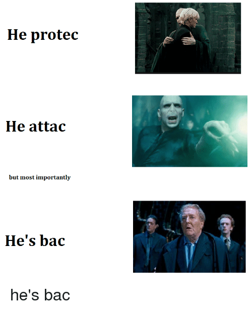 he protec he attac but most importantly hes bac 25390520 he protec he attac but most importantly dank meme on me me