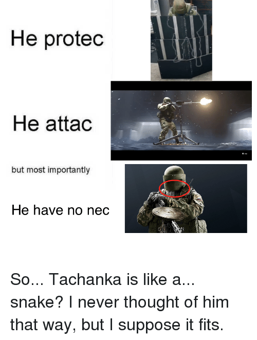 Snake, Never, and Thought: He protedc  He attac  o sip  but most importantly  He have no nedc