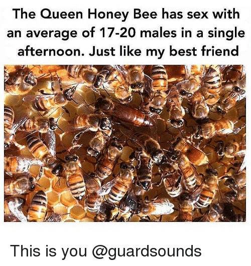 Best Friend, Dank, and Sex: he Queen Honey Bee has sex with  an average of 17-20 males in a single  afternoon. Just like my best friend This is you @guardsounds