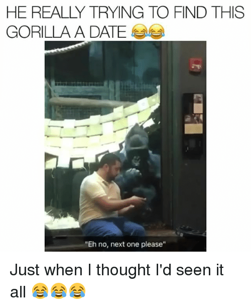 "Funny, Date, and Seen It All: HE REALLY TRYING TO FIND THIS  GORILLA A DATE  ""Eh no, next one please"" Just when I thought I'd seen it all 😂😂😂"