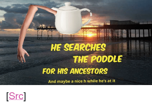 "Meme, Reddit, and Nice: HE SEARCHES  THE PODDLE  FOR HIS ANCESTORS  And maybe a nice h while he's at it <p>[<a href=""https://www.reddit.com/r/surrealmemes/comments/7gng5l/my_first_whakc_at_making_a_surreal_meme_of_my_own/"">Src</a>]</p>"