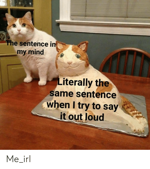 Say It, Mind, and Irl: he sentence i  my mind  Literally the  same sentence  when I try to say  it out loud Me_irl