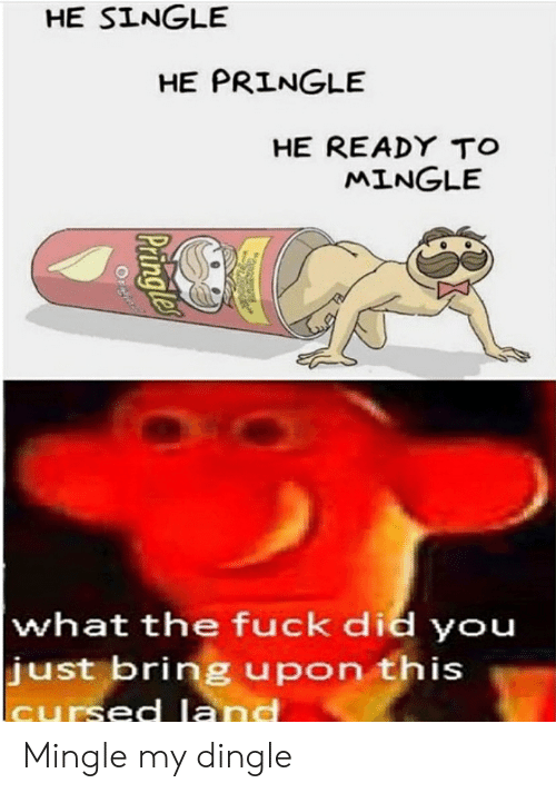 Fuck, Single, and Did: HE SINGLE  HE PRINGLE  HE READY TO  MINGLE  what the fuck did you  just bring upon this  cursed land  Pringle  Orn Mingle my dingle