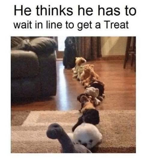 Memes, Waiting..., and 🤖: He thinks he has to  wait in line to get a Treat