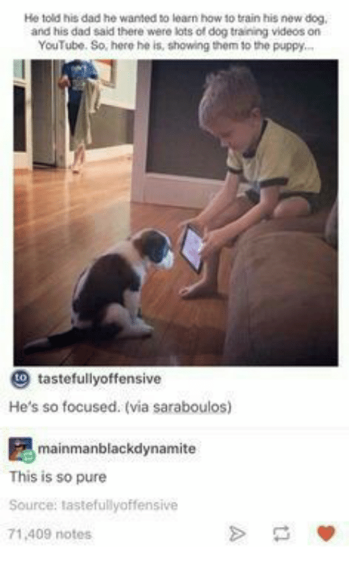 He Told His Dad He Wanted to Learn How to Train His New Dog and His