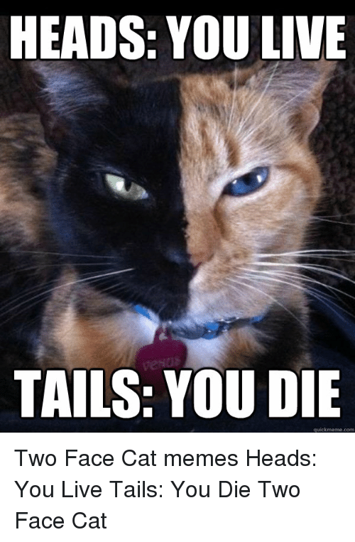 Funny, Two-Face, and Tails: HEADS YOU LIVE  TAILS: YOU DIE  quick meme com Two Face Cat memes Heads: You Live Tails: You Die Two Face Cat